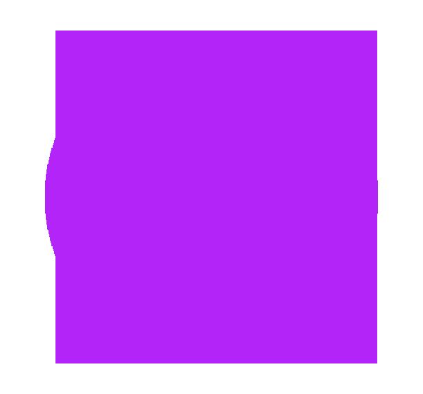 Nom De Code Wp Logo Divi 610px